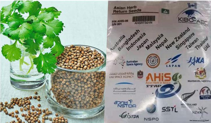 Coriander seed lands on planet Earth